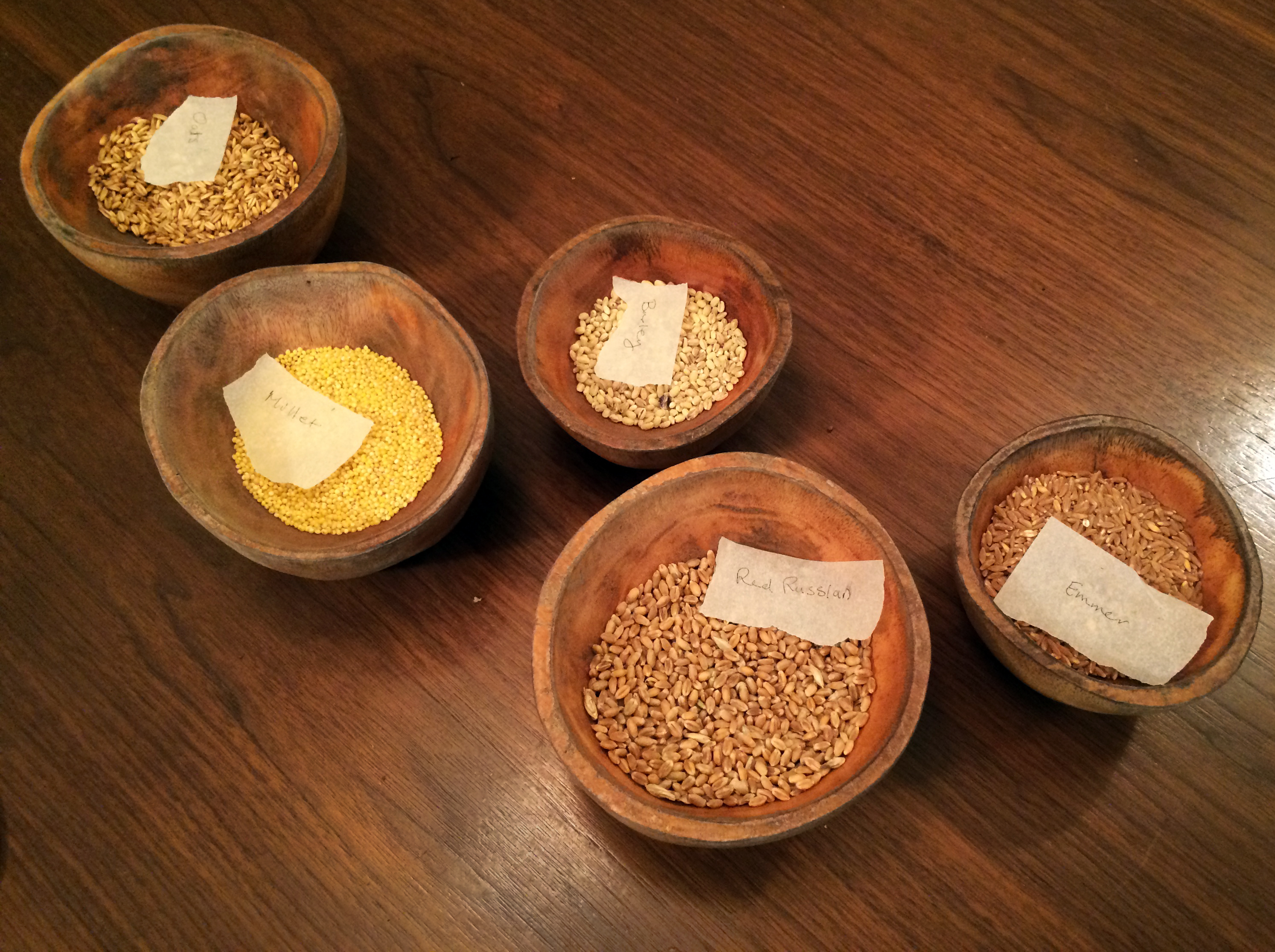Grains on table Nicola Twilley