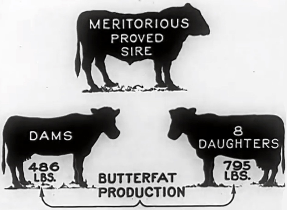 From USDA film