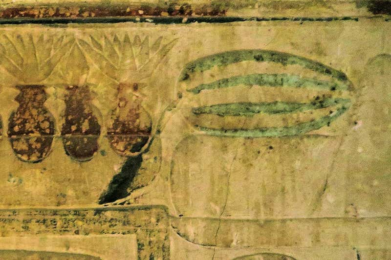 Photo of a wall painting in a tomb, yellowed with age and faded, depicting a striped, oblong white and green melon on one side.