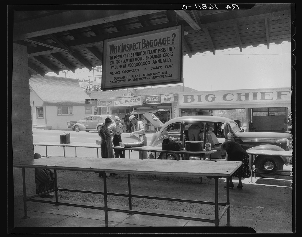 An old-fashioned car sits in the background of this black and white photo, in which a man in a pith helmet opens a suitcase while a man and a woman stand nearby looking on. Another man appears to be searching through the backseat of the car.